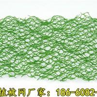 淮北三维植被网